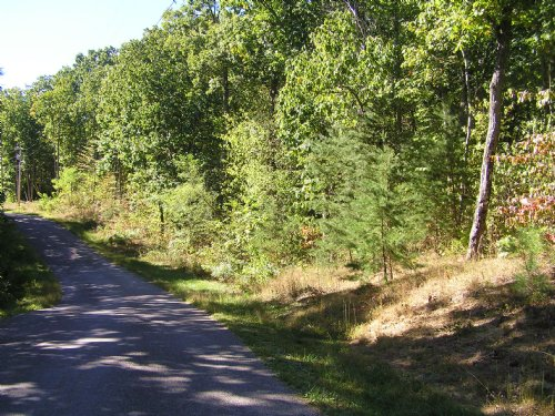 2 Lots, Owner Finance : Dunlap : Sequatchie County : Tennessee