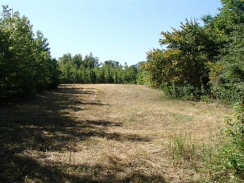65 Acres In Clay County : Montpelier : Clay County : Mississippi