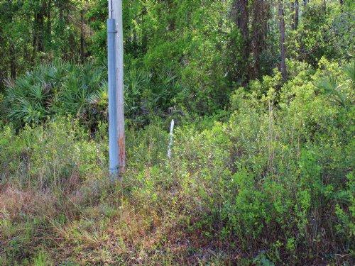 1.62 Acres : Keystone Heights : Clay County : Florida