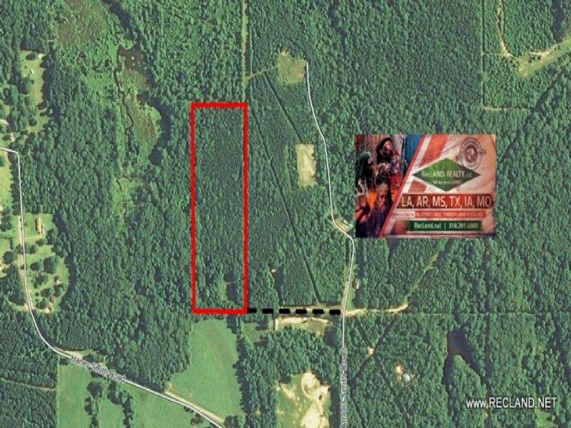 15.5 Ac - Wooded Home Site Tract Be : Calhoun : Lincoln Parish : Louisiana