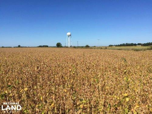 80+/- Acre Rice & Duck Hunting Farm : Slovak : Prairie County : Arkansas