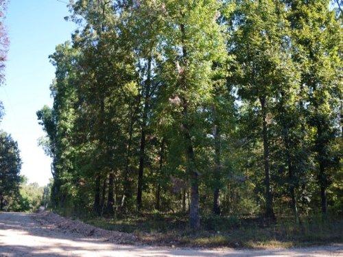 9 Subdivision Lots : Fifty Six : Stone County : Arkansas