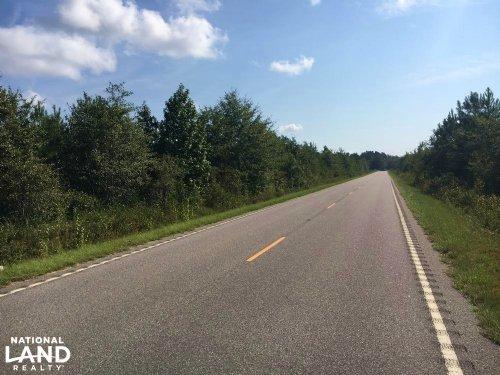 Worley Farm Lot : Galivants Ferry : Horry County : South Carolina