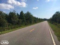 Worley Farm Lot 1 : Galivants Ferry : Horry County : South Carolina