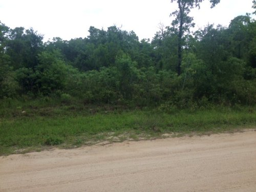 Vacant Acreage For Sale : Steinhatchee : Taylor County : Florida