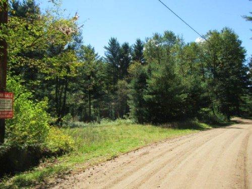 46 Acres Adirondacks Building Site : Diana : Lewis County : New York