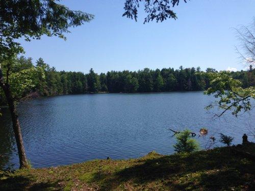 On Francis Pond : Constantia : Oswego County : New York