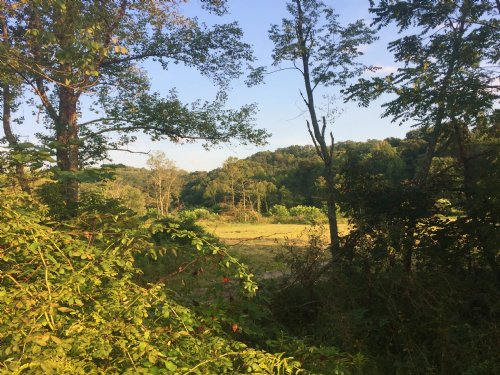 10 Ac Scenic Pasture Sr691 : Nelsonville : Athens County : Ohio