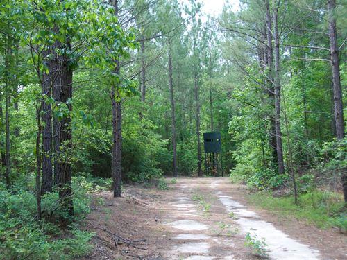 Mason Branch Plantation : Aiken : South Carolina