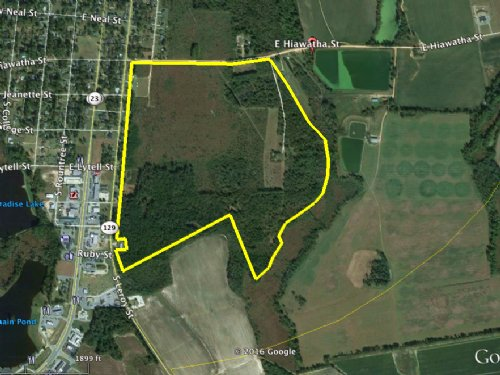 159 Acres On Hiawatha St : Metter : Candler County : Georgia