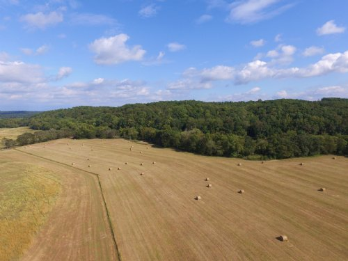 157 Acre Farm : Lobelville : Perry County : Tennessee