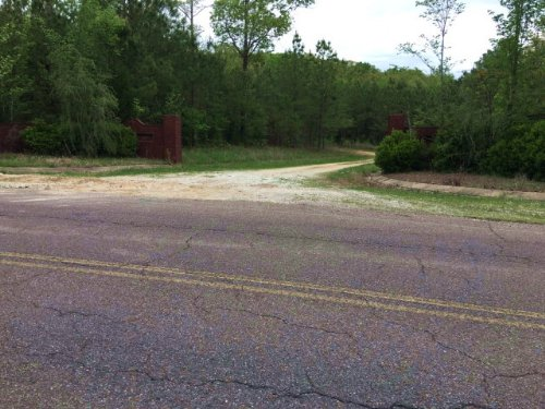 67 Acres With Lots Of Road Frontage : Huntingdon : Carroll County : Tennessee