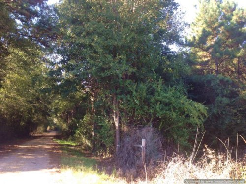 9± Acres : Tylertown : Walthall County : Mississippi