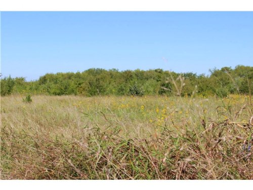 25+ Acres / 13467272 : Windom : Fannin County : Texas