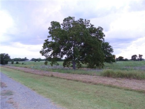 2 Homes On 5+ Acres / 13462939 : Celeste : Hunt County : Texas