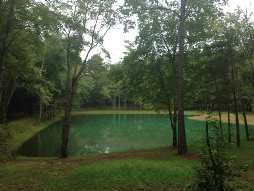 10 Acres And Pond : Spotsylvania County : Virginia