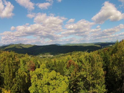 Bartlett Hill Parcel East : Berlin : Washington County : Vermont