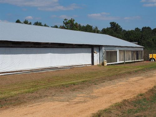 MS Poultry Farm, Liberty, MS : Liberty : Amite County : Mississippi