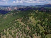 Pk Ranch : Cripple Creek : Teller County : Colorado