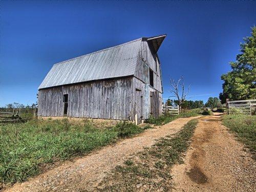 228 Acres, Kell Rd : Summersville : Texas County : Missouri