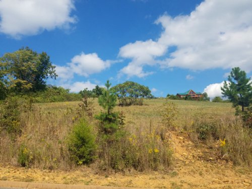 0.57 Building Lot In Shiloh Springs : Rutledge : Grainger County : Tennessee