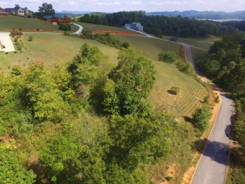 0.58 Building Lot In Shiloh Springs : Rutledge : Grainger County : Tennessee