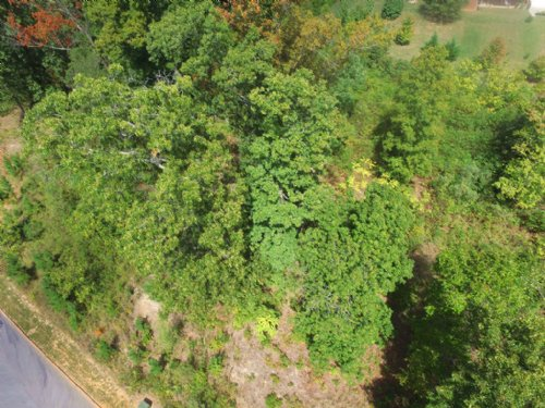 .58 Acre Bldg Lot In Shiloh Springs : Rutledge : Grainger County : Tennessee