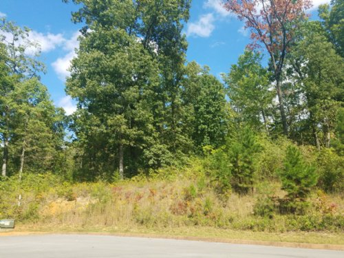 0.60 Building Lot In Shiloh Springs : Rutledge : Grainger County : Tennessee