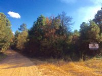 13+/- Acres Near Blue Mountain Lake : Havana : Yell County : Arkansas