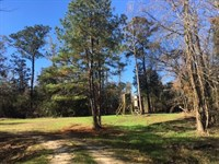 245 Acres On The Tchefuncte River : Franklinton : Washington Parish : Louisiana
