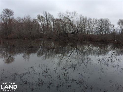 80 Acre Duck Hunting Farm Near : McCrory : Woodruff County : Arkansas
