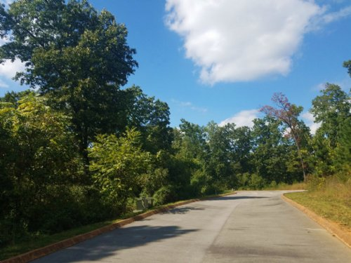 .58 Building Lot In Shiloh Springs : Rutledge : Grainger County : Tennessee