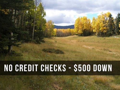 1.15 Acre Lot In Mountains : Fort Garland : Costilla County : Colorado
