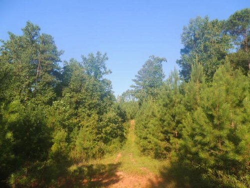 55.6 Ac Ridgeway Road : Franklin : Heard County : Georgia