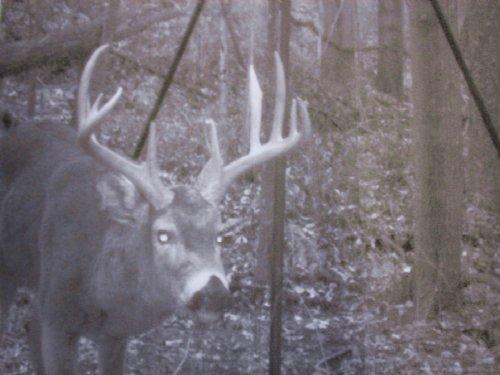 Sr 78 - 70 Acres : Glouster : Morgan County : Ohio