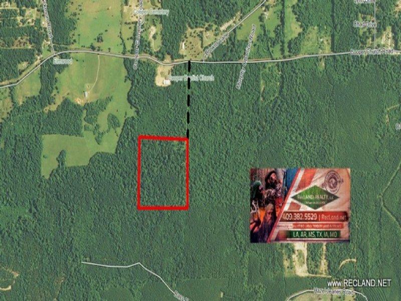 40.00 Acres Hunting Land, Timber : Leesville : Vernon Parish : Louisiana
