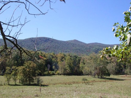 Prime Farmland With Creek Frontage : Troutdale : Grayson County : Virginia