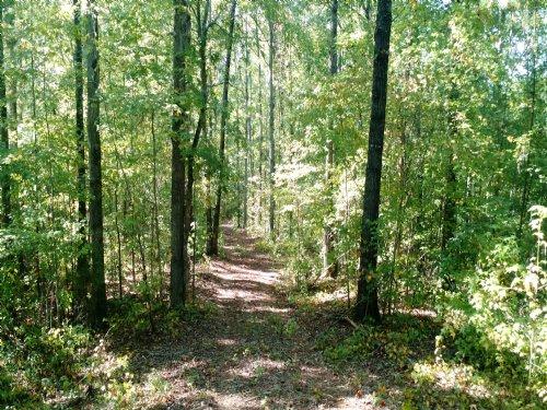 Rocky Creek Road : Forsyth : Monroe County : Georgia