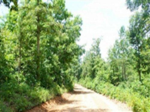8.39 Acre Green Mountain Ranch : Winona : Shannon County : Missouri