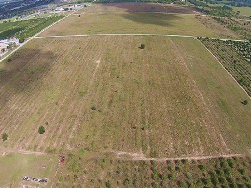 50± Ac Residential Development Land : Haines City : Polk County : Florida