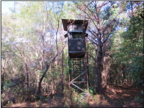 122 Acres In Monroe County : Smithville : Monroe County : Mississippi