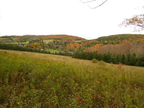 45 Acres In Catskill Mountains : Hamden : Delaware County : New York