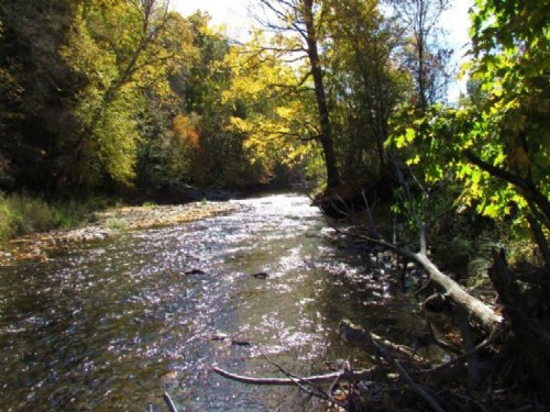 20 Acres Creek Near State Forests : Smithville : Chenango County : New York