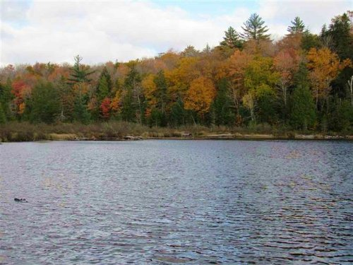 Lot 13 E Fence Lk Dr. Mls# 1098130 : Michigamme : Baraga County : Michigan