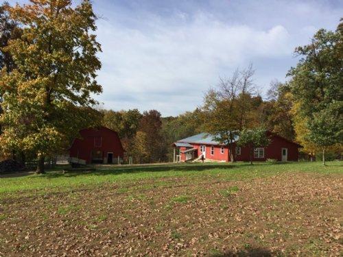 65.21 Acre Rural Retreat : Cazenovia : Richland County : Wisconsin