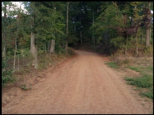 27 Acre Homesite In Holmes County : Lexington : Holmes County : Mississippi