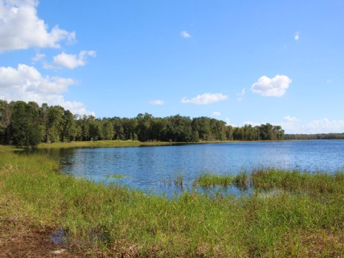 1.18 Ac Lot On Waters Lake : Trenton : Gilchrist County : Florida