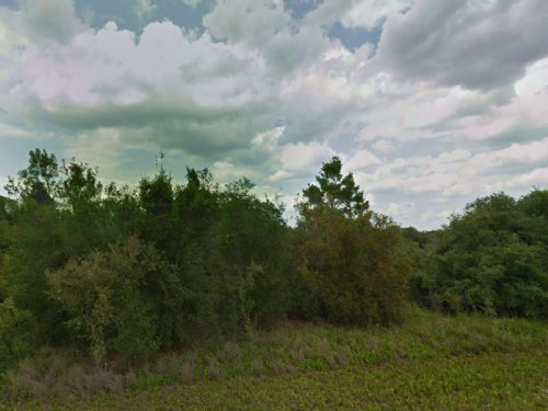 Bulk Deal - 22 Vacant Lots For Sale : Lake Placid : Highlands County : Florida