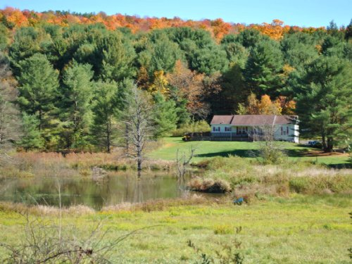 Home On 63 Acres Overlooking Creek : Berkshire : Tioga County : New York