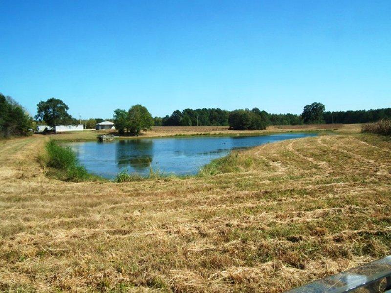 Doaks Creek : Camden : Madison County : Mississippi